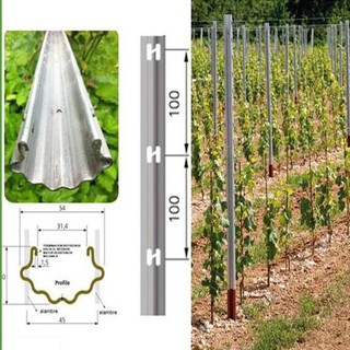 1.8m Durable Grape Stakes/ Vineyard Trellis Post